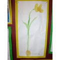 Class 1 - Spring flowers
