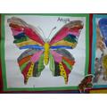 Class 1 - symmetrical butterflies