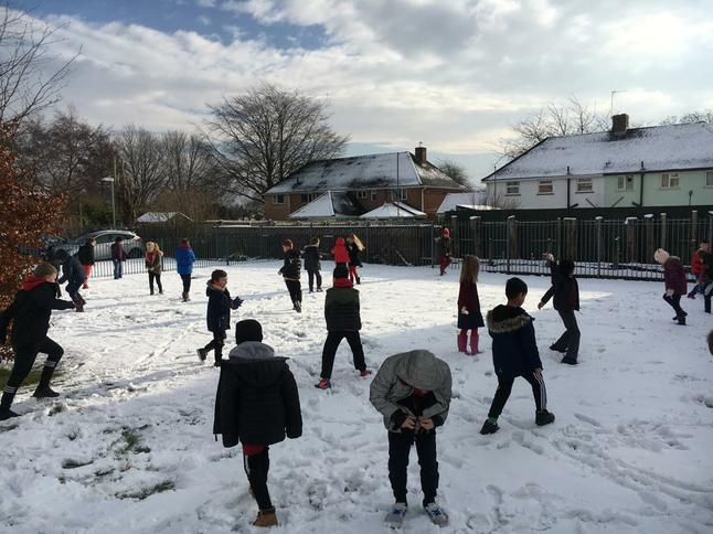 Finding out how far we can fly a snowball!