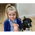 Millie's show and tell is her dog Bonnie.