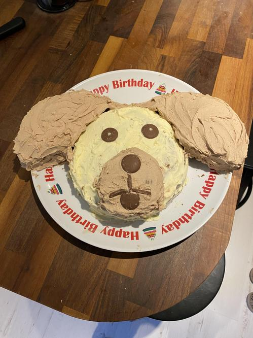 Olivia's birthday cake