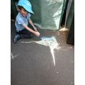 Chalk drawn woodpecker
