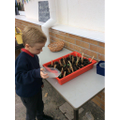 Looking after our plants