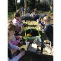 Planting Seeds - Lucky dip!