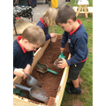 Digging for worms