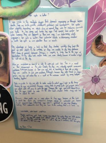 An example of writing from Year 5