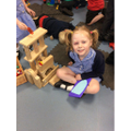Building a Bug House
