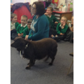 Visit from Millie the dog