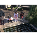 Investigating the big pond