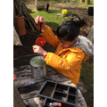 Drilling a new tin can planter