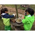 Offering birds nest-making materials
