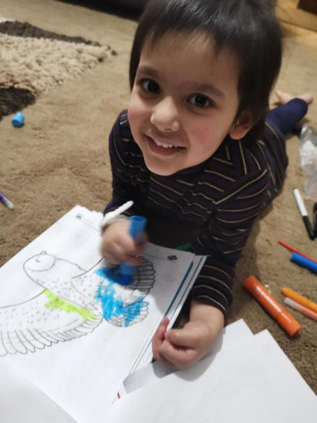 Wow Anayah you are getting very good at colouring!