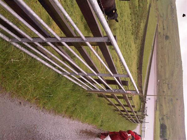 Castleshaw Trip