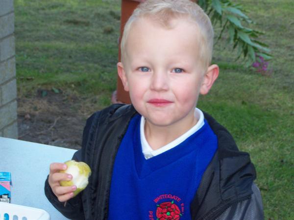 Charlie enjoying his apple whilst outside!