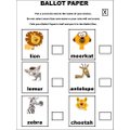 BALLOT PAPER USED TO VOTE