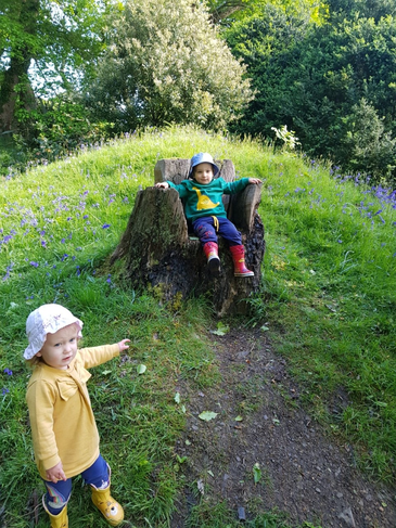 HP's woodland throne.