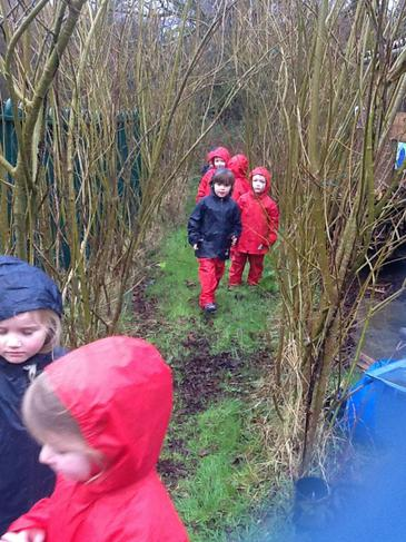 Woodland number walk.