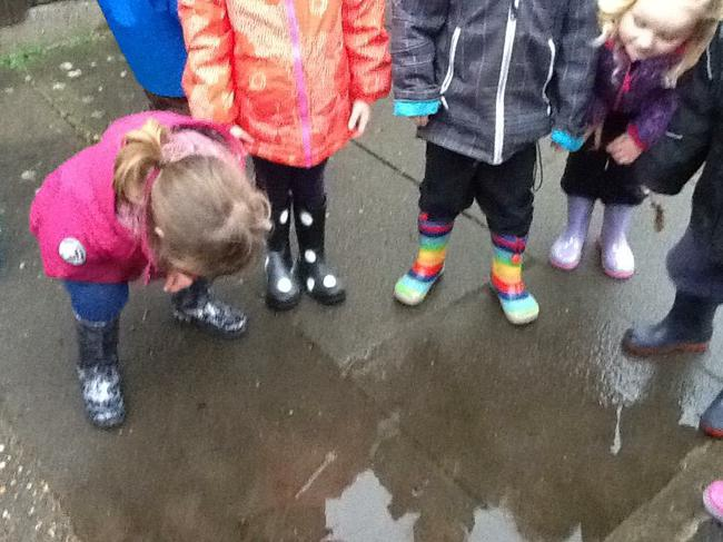 Looking for  our reflections in puddles.
