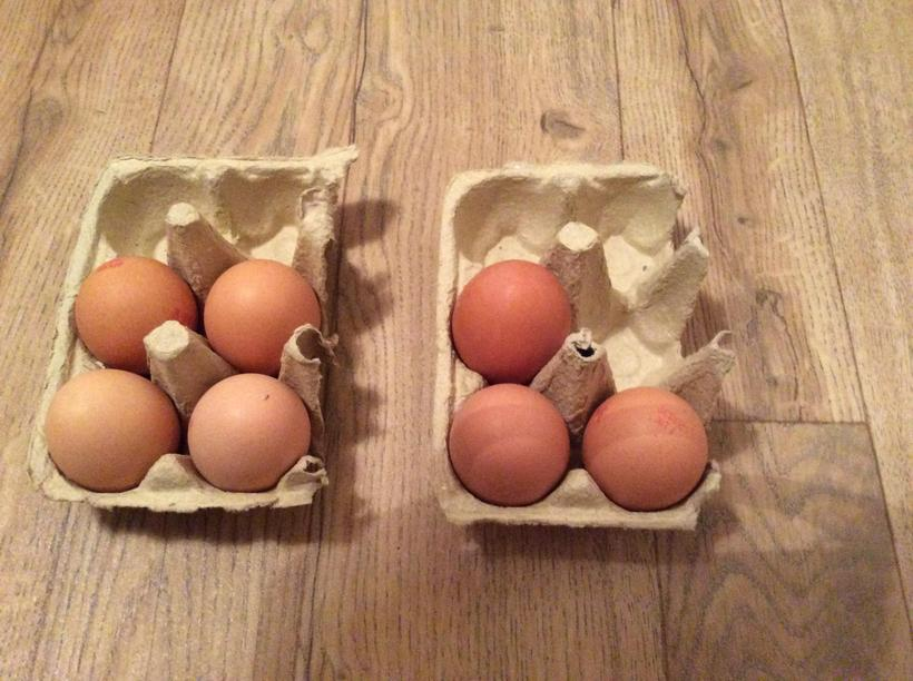 How many eggs altogether? 4 + 3 = ?