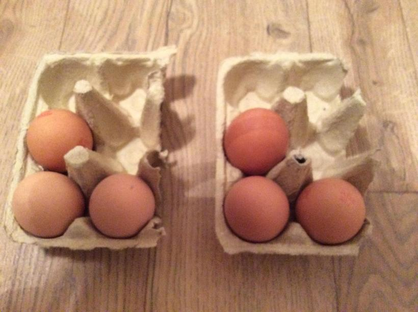 How many eggs altogether? 3+3 = ?