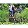 Pond Dipping - What did they find?