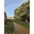 Finding a beautiful rainbow