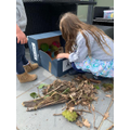 We collected some materials like twigs,moss and...