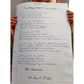 Superb 'Rhyme of Skywalker' poem James