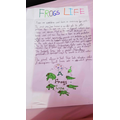 Muntaha's 'Frog Life' presentation - well done!