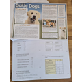 Great Guide Dog work Charlie