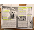 Amazing work Isla on Guidedogs, Judaism & History