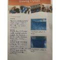 Well done Connor: Science Crystal Growing