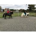 Enjoying horse riding