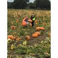 A trip to the pumpkin farm
