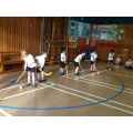 Practising our 'ice hockey'!