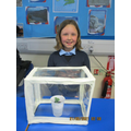 Well done Evelyn for attention to detail and great application of skill.