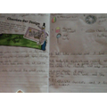Holly's brilliant home learning work!