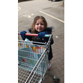 Doing the weekly shop