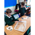 Archaeologists searching for fossils in our science lesson!