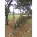 The perimeter fencing goes up