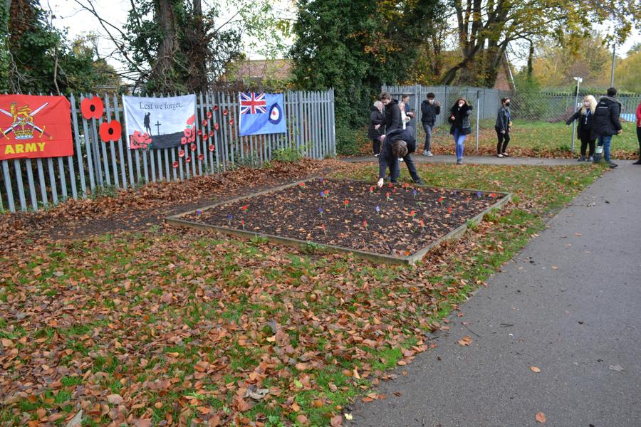 We laid poppies that had been painted by students