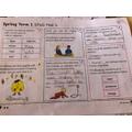 Finlay's grammar practice