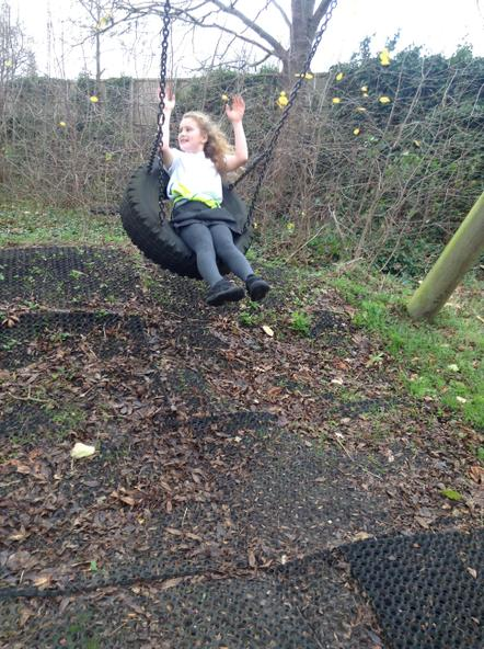 The tyre swing was a massive hit with the children