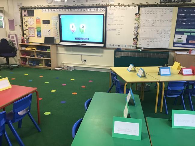 Rabbits classroom
