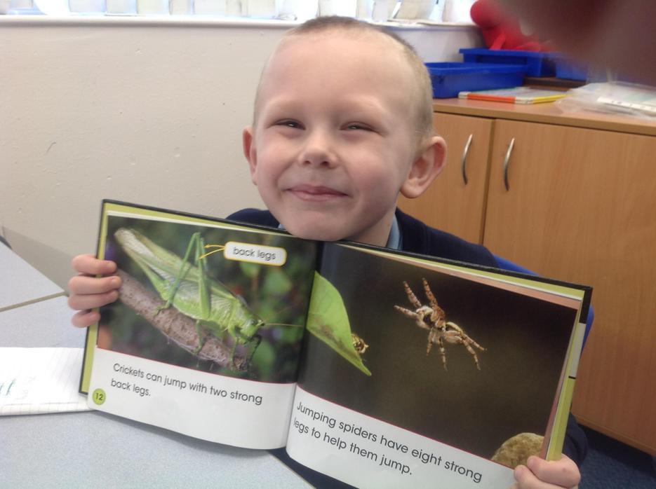 Grasshopper facts!