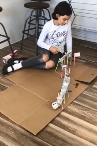 Erin's Roller Coaster