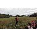 School visit to a nearby 'Dried Flower Nursery.'