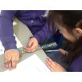 Twanging ruler investigation.