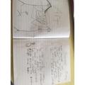 Jacob and Thiago's work