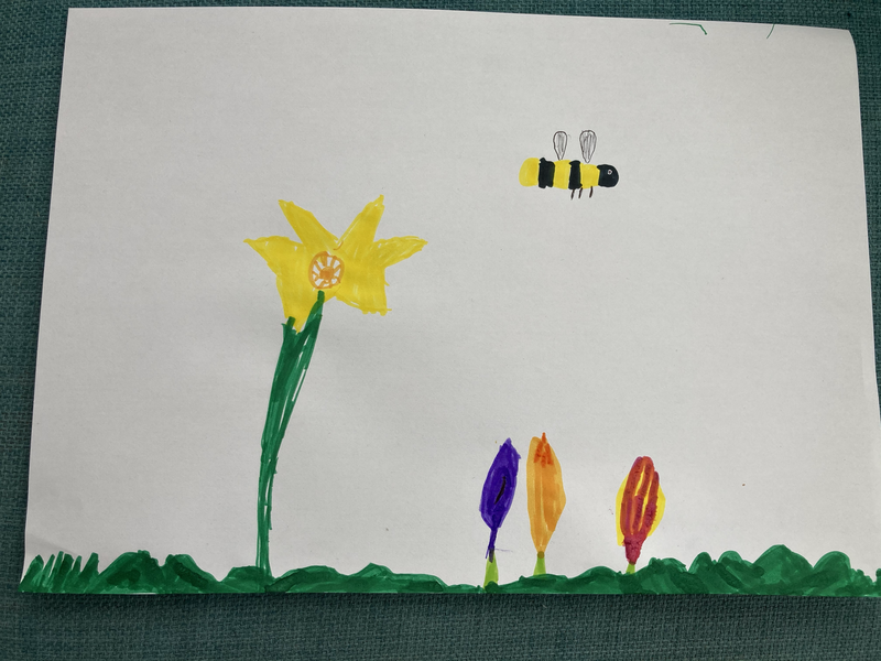 Daniel's spring flowers